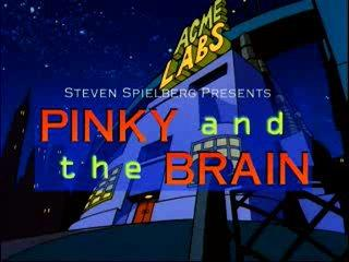 Pinky And The Brain - S3e19 E20 - Pinky And The Brainmaker, Calvin Brain